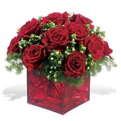 Aydın incir çiçek çiçek yolla  9 adet kirmizi gül cam yada mika vazoda
