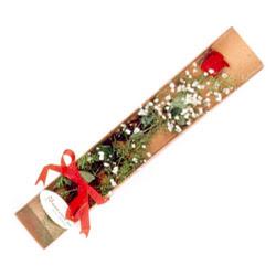 Aydın incir çiçek çiçek , çiçekçi , çiçekçilik  Kutuda tek 1 adet kirmizi gül çiçegi