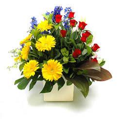 Aydın incir çiçek online çiçek gönderme sipariş  9 adet gül ve kir çiçekleri cam yada mika vazoda