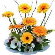 camda gerbera ve mis kokulu kir çiçekleri  Aydın incir çiçek çiçekçi telefonları