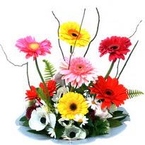 Aydın incir çiçek hediye çiçek yolla  camda gerbera ve mis kokulu kir çiçekleri