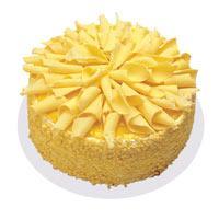 Muzlu pasta 4 ile 6 kisilik yas pasta  Aydın incir çiçek çiçekçi telefonları