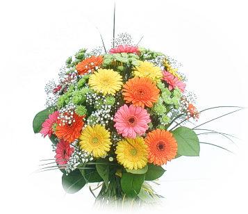 13 adet gerbera çiçegi buketi  Aydın incir çiçek online çiçek gönderme sipariş