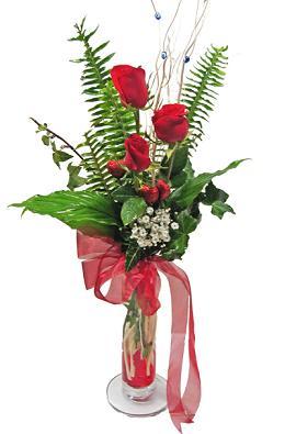 Çiçek gönderin cam vazoda 3 gül çiçekleri  Aydın incir çiçek çiçek siparişi sitesi