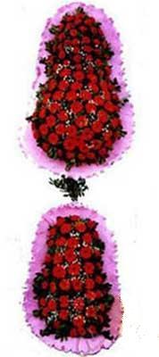 Aydın incir çiçek hediye çiçek yolla  dügün açilis çiçekleri  Aydın incir çiçek çiçek siparişi sitesi