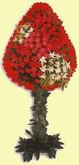 Aydın incir çiçek çiçek gönderme  dügün açilis çiçekleri  Aydın incir çiçek çiçek online çiçek siparişi