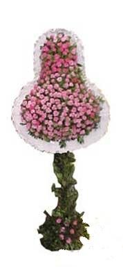 Aydın incir çiçek ucuz çiçek gönder  dügün açilis çiçekleri  Aydın incir çiçek internetten çiçek siparişi