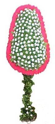 Aydın incir çiçek çiçekçi telefonları  dügün açilis çiçekleri  Aydın incir çiçek cicek , cicekci