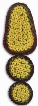 Aydın incir çiçek çiçek gönderme  dügün açilis çiçekleri nikah çiçekleri  Aydın incir çiçek çiçek siparişi sitesi