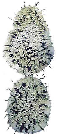 Aydın incir çiçek uluslararası çiçek gönderme  nikah , dügün , açilis çiçek modeli  Aydın incir çiçek hediye çiçek yolla