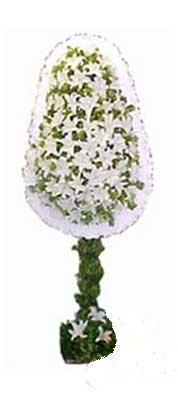 Aydın incir çiçek çiçek siparişi sitesi  nikah , dügün , açilis çiçek modeli  Aydın incir çiçek online çiçek gönderme sipariş