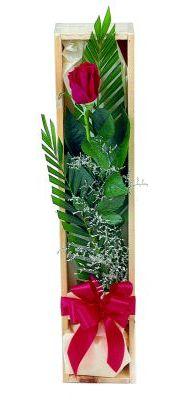 1 adet kutuda kirmizi gül  Aydın incir çiçek çiçek gönderme sitemiz güvenlidir