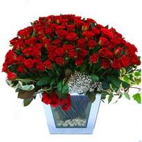 Aydın incir çiçek çiçekçiler   101 adet kirmizi gül aranjmani