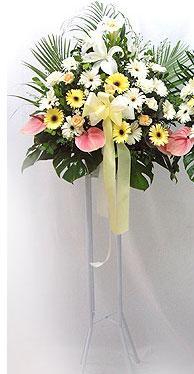 Aydın incir çiçek online çiçek gönderme sipariş   perförje çiçegi dügün çiçekleri