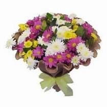 Aydın incir çiçek çiçekçi telefonları  Mevsim kir çiçegi demeti