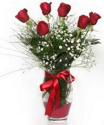 7 adet gülden cam içerisinde güller  Aydın incir çiçek 14 şubat sevgililer günü çiçek