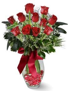 9 adet gül  Aydın incir çiçek internetten çiçek satışı  kirmizi gül