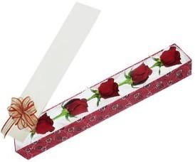 Aydın incir çiçek internetten çiçek satışı  kutu içerisinde 5 adet kirmizi gül