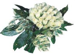 Aydın incir çiçek internetten çiçek siparişi  9 Beyaz gül Özel kisiler için