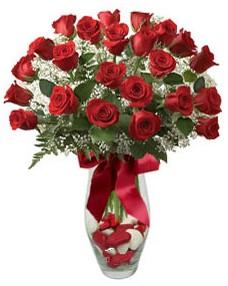 17 adet essiz kalitede kirmizi gül  Aydın incir çiçek çiçek mağazası , çiçekçi adresleri