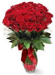 19 adet essiz kalitede kirmizi gül  Aydın incir çiçek 14 şubat sevgililer günü çiçek