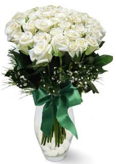 19 adet essiz kalitede beyaz gül  Aydın incir çiçek çiçekçiler