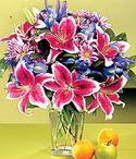 Aydın incir çiçek çiçek mağazası , çiçekçi adresleri  Sevgi bahçesi Özel  bir tercih