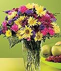 Aydın incir çiçek güvenli kaliteli hızlı çiçek  Mevsim çiçekleri vazo tanzim sevdiklerinize çiçek