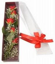 kutu içinde 5 adet kirmizi gül  Aydın incir çiçek internetten çiçek siparişi