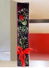 kutu içinde tek kirmizi gül  Aydın incir çiçek çiçek online çiçek siparişi