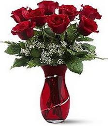 Vazo içinde 8 adet kirmizilar içinde güller  Aydın incir çiçek internetten çiçek siparişi