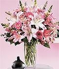 Aydın incir çiçek çiçek yolla , çiçek gönder , çiçekçi   Kazablanka biçme vazoda