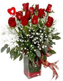 Aydın incir çiçek çiçek siparişi vermek  9 adet mika yada cam vazoda gül tanzimi kalp çubuk