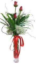 Aydın incir çiçek çiçek siparişi sitesi  3 adet kirmizi gül vazo içerisinde
