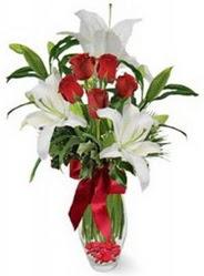 Aydın incir çiçek çiçek siparişi vermek  5 adet kirmizi gül ve 3 kandil kazablanka