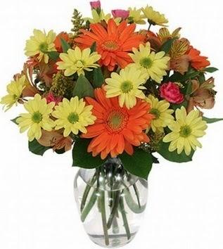 Aydın incir çiçek hediye sevgilime hediye çiçek  vazo içerisinde karışık mevsim çiçekleri