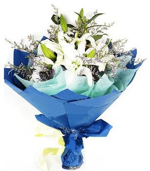 Aydın incir çiçek anneler günü çiçek yolla  4 adet dal kazablankadan görsel buket