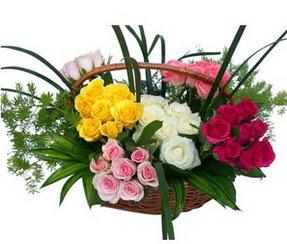 Aydın incir çiçek ucuz çiçek gönder  35 adet rengarenk güllerden sepet tanzimi