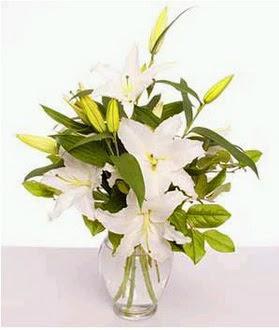 Aydın incir çiçek çiçek gönderme  2 dal cazablanca vazo çiçeği