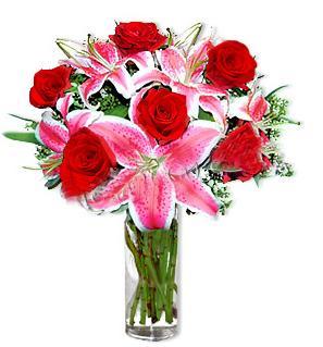 Aydın incir çiçek çiçek yolla  1 dal cazablanca ve 6 kırmızı gül çiçeği