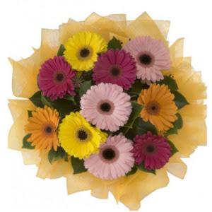 Aydın incir çiçek incir çiçek İnternetten çiçek siparişi  11 adet karışık gerbera çiçeği buketi