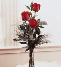 Aydın incir çiçek internetten çiçek satışı  Vazoda 3 adet güzel gül
