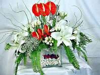 Aydın incir çiçek çiçek mağazası , çiçekçi adresleri  Anthurim Kazablanka  gül
