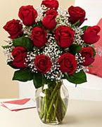 Sevgilime hediye 9 adet 1.ci kalite gül  Aydın incir çiçek anneler günü çiçek yolla