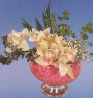 Aydın incir çiçek çiçek mağazası , çiçekçi adresleri  Dal orkide kalite bir hediye