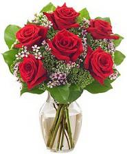 Kız arkadaşıma hediye 6 kırmızı gül  Aydın incir çiçek internetten çiçek siparişi