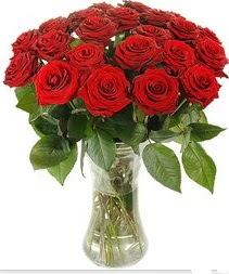 Aydın incir çiçek çiçek mağazası , çiçekçi adresleri  Vazoda 15 adet kırmızı gül tanzimi