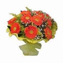 Aydın incir çiçek çiçek yolla  11 adet seçme gerbera çiçegi