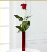 Vazo içerisinde 1 adet kırmızı gül  Aydın incir çiçek internetten çiçek siparişi
