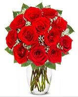 12 adet vazoda kıpkırmızı gül  Aydın incir çiçek cicek , cicekci